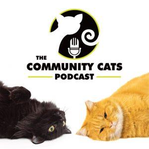 CatPodcast2
